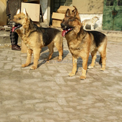 toy dogs that decorative artificial fake decorative plush german shepherd