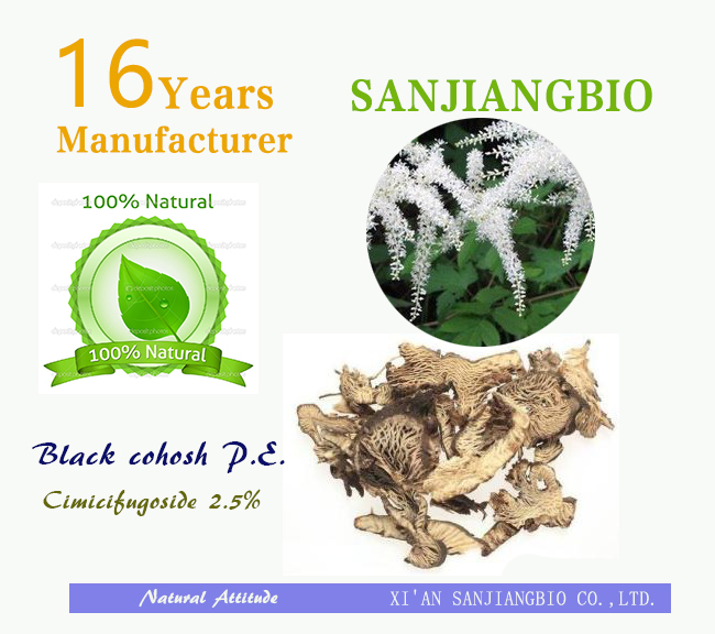 100 % Natural Black Cohosh Extract Powder 2.5% Triterpene Glycosides