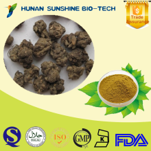 CAS 1401-55-4 Natural Ranunculus ternatus Thunb. Extract 3%-5% Total Alkaloids