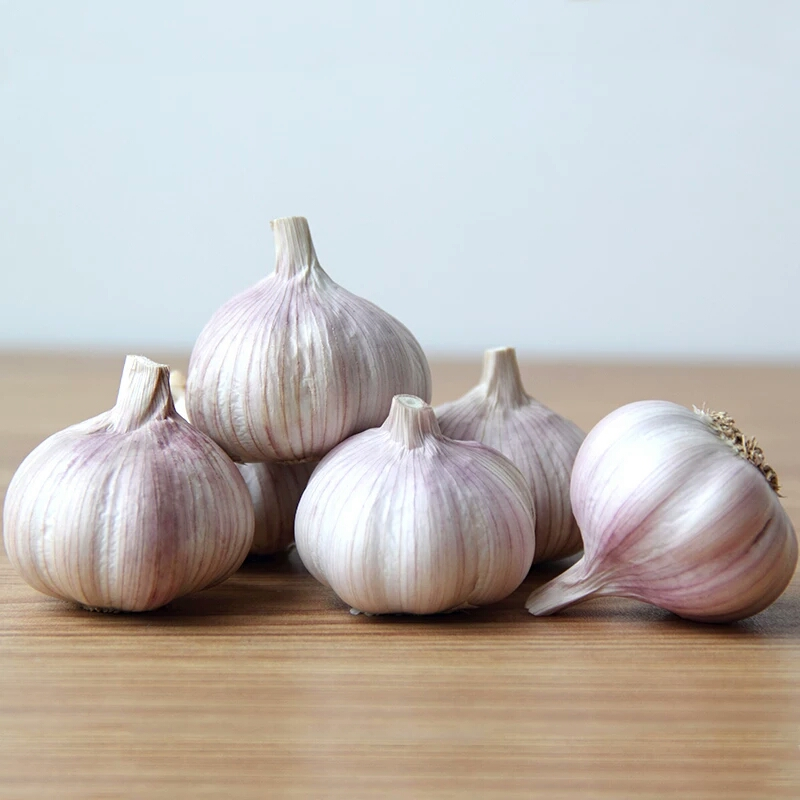 Chinese fresh natural normal white garlic