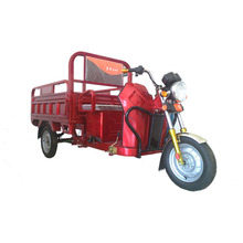new three wheel cargo electric tricycle