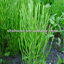 100% Extract Horsetail P.E.with Silicone 7%
