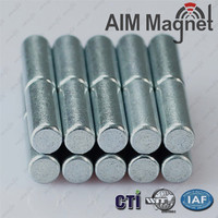 Strong Magnet 6 mm x 10 mm