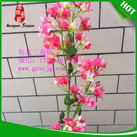 OEM manufacture bougainvillea tree