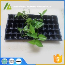 Garden Plant Growing Trays No Drain Holes