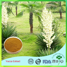 Free Sample Professional factory supply Animal feed additive Sarsaponin Yucca Schidigera Extract Powder