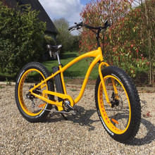Customized color 48V 500W fat tire cheap fast electric dirt bike/ebike for sale RSEB505