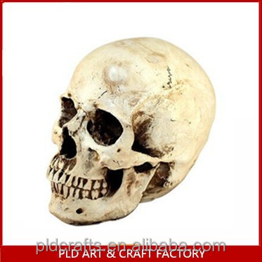 Halloween Resin Skull Head/Resin Skull/Halloween Skull Head