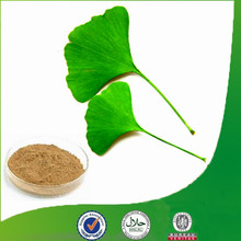 High-quality ginkgo biloba extract 40mg bulk