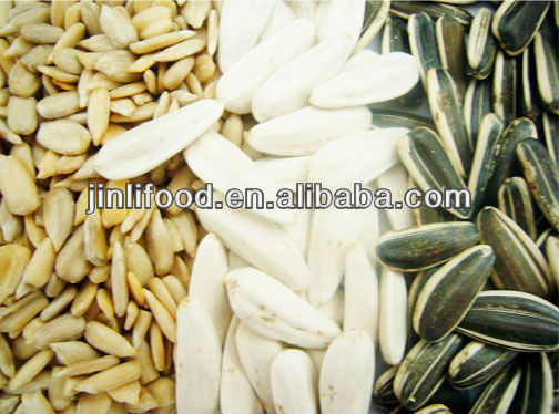 sunflower seeds -food importers and food distributor