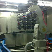 Fanuc Robot Spray Painting Line for Car Parts