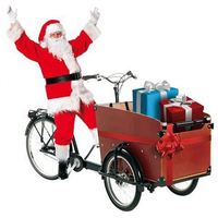Most Popular Cargo Tricycles On Tricycle Bicycle For Sale