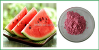 100% natural spray dried watermelon fruit juice concentrate powder for beverage & health food