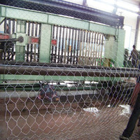 Professional factory hexagonal decorative chicken wire mesh