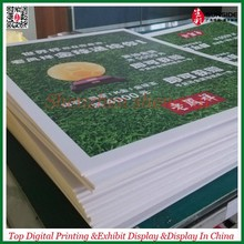 white rigid celuka PVC foam board/PVC sheet printing material