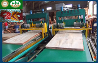 4*8 feet forked type automatic veneer plywood production line/veneer plywood paving cutting machine