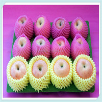 Hot sale flesh exotic fruit and vegetable serving trays for christmas