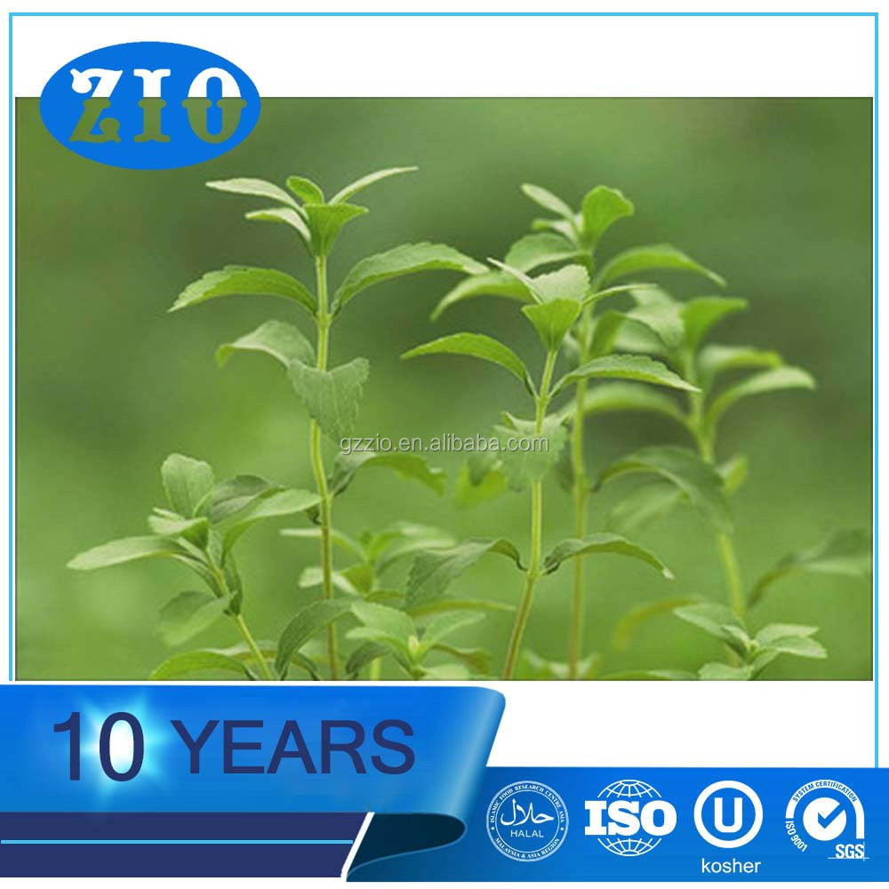 Top Quality Stevia Extract Rebaudioside A Stevioside , Food Grade Stevia extract