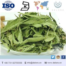 Supply Competitive Leaves Extract Stevioside 90% Stevia Wholesale Prices