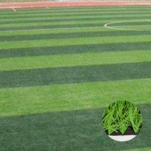 Professional waterproof synthetic grass for soccer fields