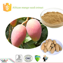 World-way high quality losing weight ingredient African mango seed extract with 10% flavones 10:1 20:1