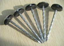 Hot sale galvanized umbrella head roofing nails (Factory)