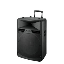 Polinata 18 inch Pro Dj High power built-in Bluetooth USB  Plastic Cabinet Active  speaker box