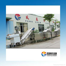 CWA-2020 fruits and vegetable processing equipment
