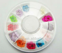 3D nail art acrylic flower nail decoration /nail real dried flowers