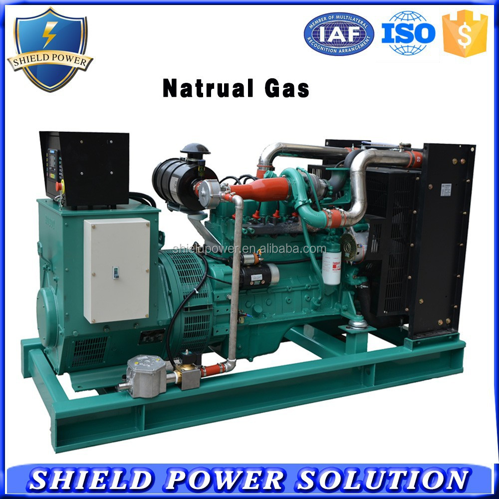Single Phase 3 Phase Natural Gas Generator, CNG Generator Set Factory