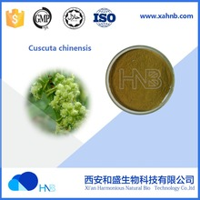 100% Natural Cuscuta chinensis Extract / Semen Cuscutae / South Dodder Seed P.E.