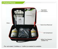 Hangzhou Eversafe Professional tire sealant kits with air compressor
