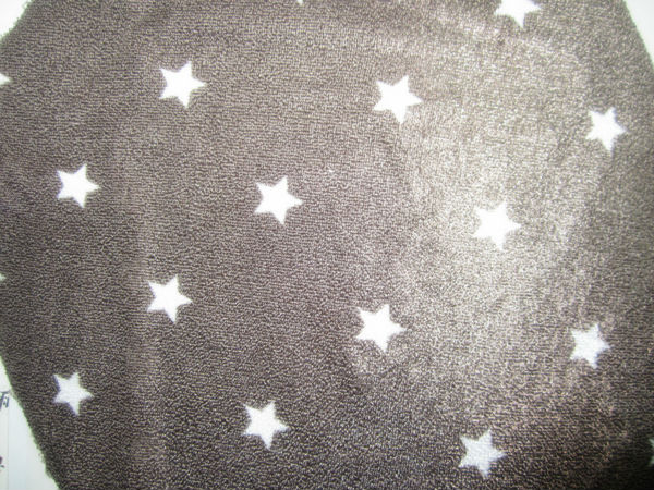 printed two side brushed polar fleece fabric