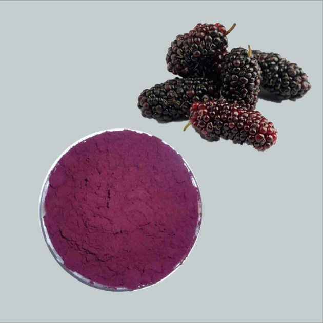 Sang Shen Dried Mulberry Fruit Extract For Cosmetics Anthocyanidins 5%-25%