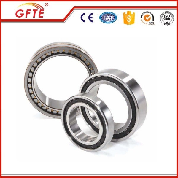 High performance Cylindrical roller bearing made NU204E, NU2204E in China