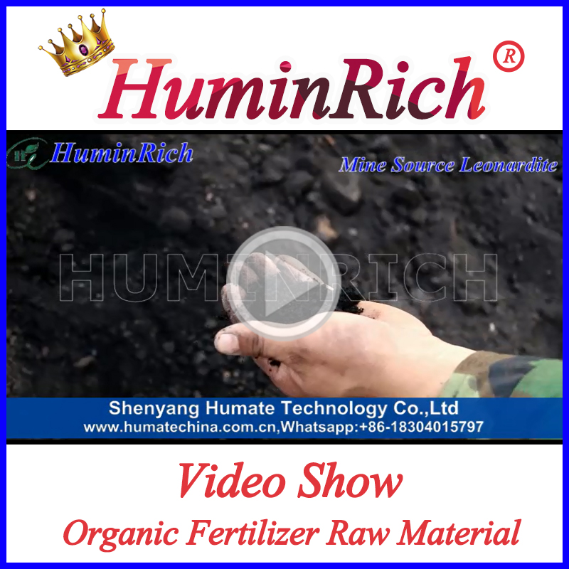 """HuminRich"" Planting Base Best Fertilizer For Tomatoes Soluble Potassium Humates For Palm Oil Trees"