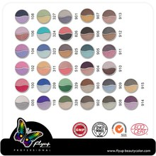 Fast supplier wholesale beauty shining makeup eye shadow