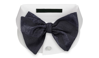 delicate bow ties self tie