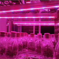 hydroponic nutrient led grow light, led grow light for orchid, flowering best fruiting