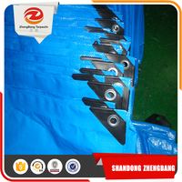 China Manufacturer Camping Tent Blue Pe Tarpaulin Packed In Rolls
