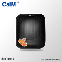 Callvi Dual Microphone Speaker Portable Mini Amplifier For Teachers Coaches Tour Guide