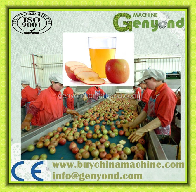 concentrate fruit juice production line / apple juice making machine
