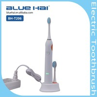 Hot Selling Sonic Personalized OEM Electronic Toothbrush,Electric Toothbrush,Magnetic Suspension