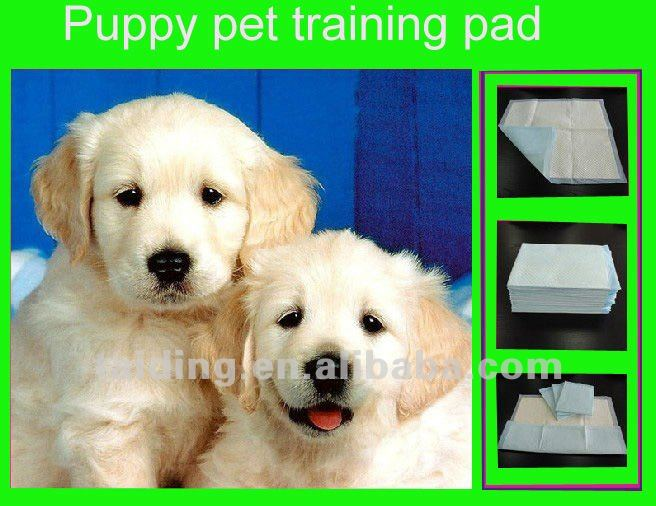 high quality pet training pad, puppy pet training pad ,cool pet pad )