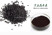 Supply natural herbals black rice extract 5%~25% anthocyanin