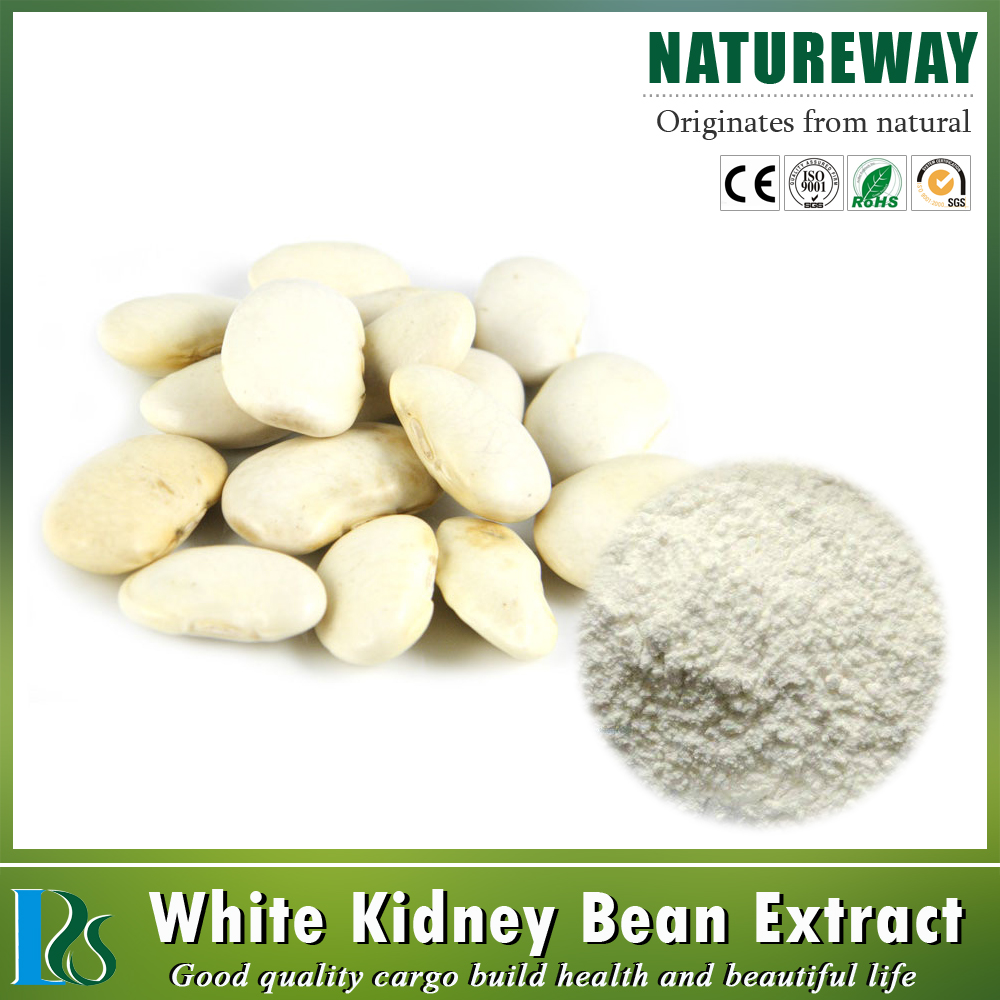 Natural white kidney bean plant extra