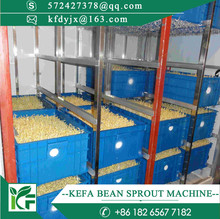 Automatic bean sprouts machine