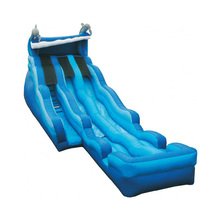 OEM customized Dolphin inflatable water slide with pool