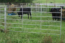Galvanized welded pipe livestock cattle used corral fence panels for horse,durable 6 or 5 bar steel temporary metal
