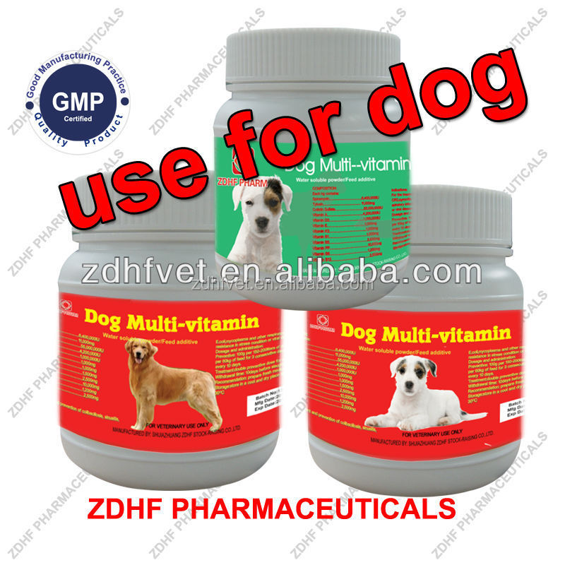 Dog vitamins and supplement/dog vitamins and supplement in Veterinary medicine /dog vitamins and supplement in pet food